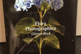Card Set (Wallet): Flora Photographica