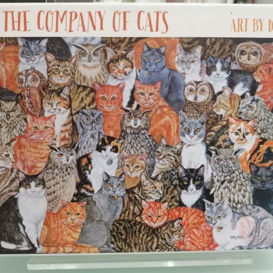 Card Set (Boxed): In the Company of Cats
