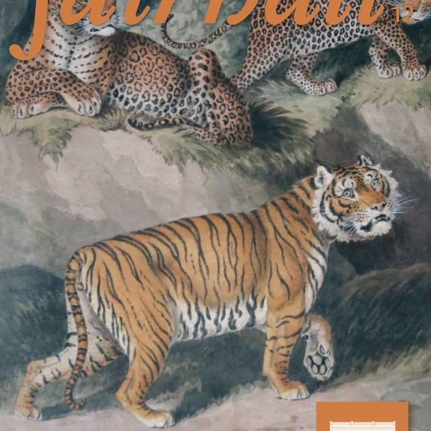 Fairhall Magazine   Issue 12   July 2014