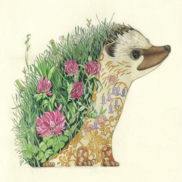 Card (DM Collection): Hedgehog