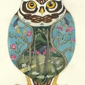 Card (DM Collection): Little Owl