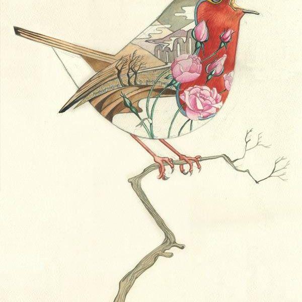 Card (DM Collection): Robin