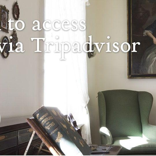 covid 19 TripAdvisor