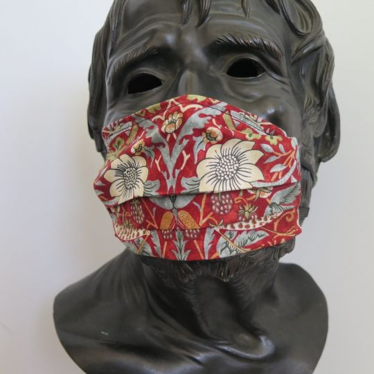 TJC Liberty Face Mask: Strawberry Thief Marigold  RED