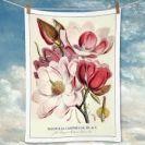 Tea Towel (La Brocante): Magnolias