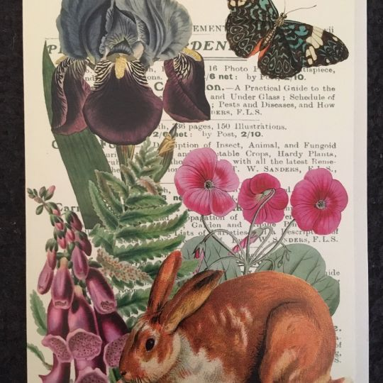 Card (Madame Treacle): Rabbit in the Garden