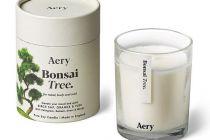 Candle: Botanical Soy Candle - Bonsai Tree