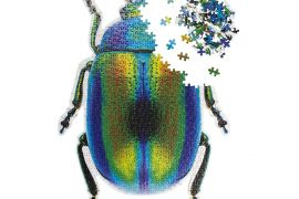 Jigsaw (500 piece & framing adhesive system): Beetle
