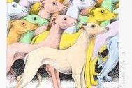 Card (Simon Drew): Greyhound