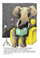 Card (Simon Drew): Old Elephant