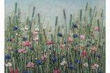 Card (Jo Butcher): Wildflower  Meadow