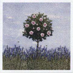 Card (Jo Butcher): Rose in Lavender Border