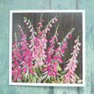 Card (Jo Butcher): Foxgloves