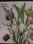 Card Set (Wallet): Flora Spring