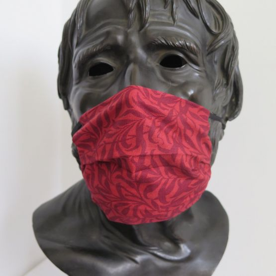 TJC Liberty Face Mask: Willow Red