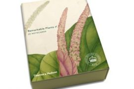 Card Set (Boxed): Remarkable Plants