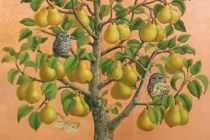 Card: Bosc Pears With Little Owls
