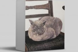 Card Set (Boxed): Cressida Campbell - Solitary