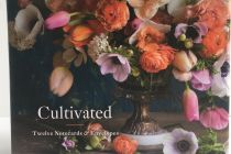 Card Set (Boxed): Cultivated