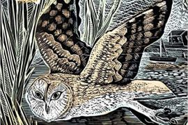 Jigsaw (1000 piece square puzzle): Angela Harding - Marsh Owl