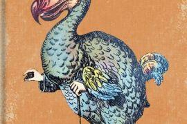 Card: Dodo