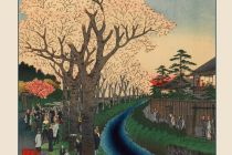 Card Set (Boxed): Hiroshige: Cherry Blossoms Notecards