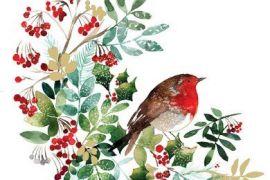 Paper Napkins (Lunch): Christmas- Pettirosso