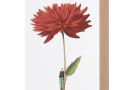 Card (Laura Stoddart):Dahlia