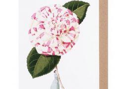 Card (Laura Stoddart):Camellia