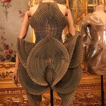 Sally Gray_Iris van Herpen dress exhibited in The Vulgar Fashion Redefined