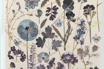Card (Fireweed): Midnight Garden