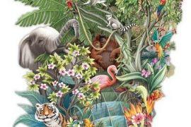 Card (3D Pop up): The Jungle