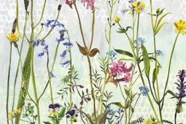 Card (Annabel Langrish): Buttercups and Blues