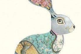 Card (DM Collection): Bunny