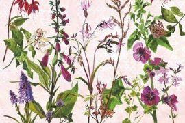 Card (Annabel Langrish): Purple and Fuchsias