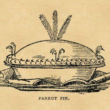 ParrotPie-2