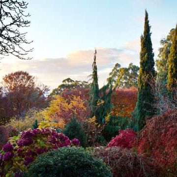 2017 Autumn Country Garden tour April 2017
