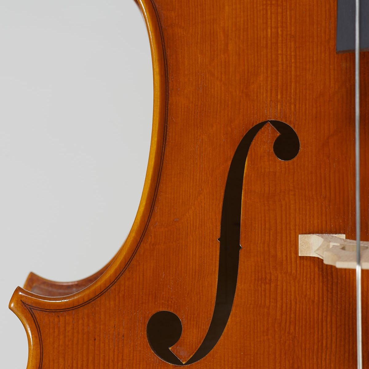 cello-detail