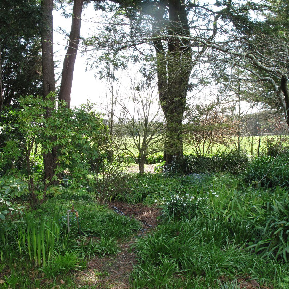 Garden Visits 070